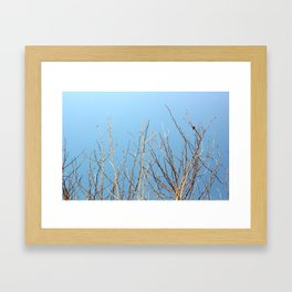 Winter Freeze Framed Art Print