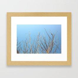 Winter Freeze Framed Art Print