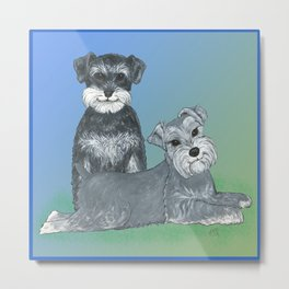 Dogs- Schnauzers - Dogs By Nina Lyman Metal Print
