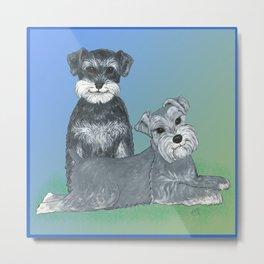 Dogs- Schnauzers - Dogs By Nina Lyman Metal Print