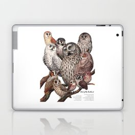 Owls of the Northeast Laptop & iPad Skin