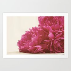 Pretty Pink Peonies Art Print