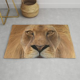 Male Lion Rug