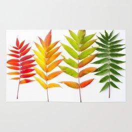 Rainbow Sumac for Autumn in Canada Rug