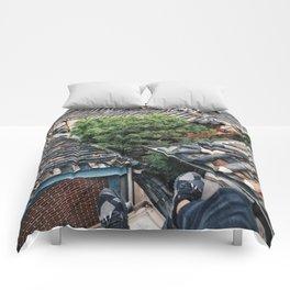 R / KR / 01 Comforters