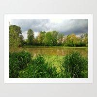 White Oaks Lake in the Bush Art Print