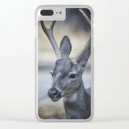 Buck with Two Pronged Antlers Clear iPhone Case