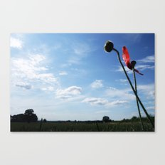 A Dash of Red Canvas Print