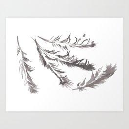 Crow Feather Study Art Print
