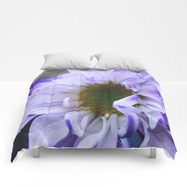 Purple Rush Comforters