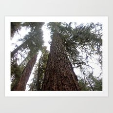 Breathe Through the Trees Art Print