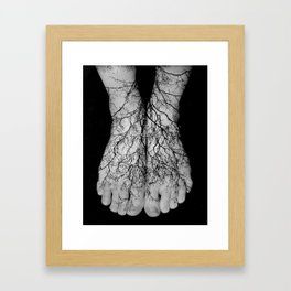 Our roots lie within our veins. Framed Art Print