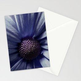 Osteospermum Portrait Stationery Cards