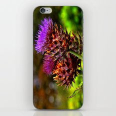 The Colour Purple iPhone & iPod Skin