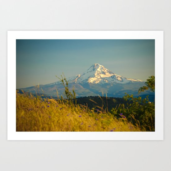 Mount Hood from Courtney Ridge Art Print