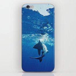 Shark Swimming iPhone Skin