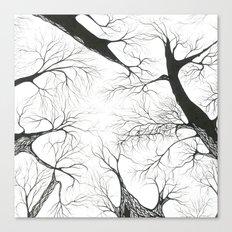 Galhos Canvas Print