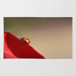 Ladybug on a Rose Rug