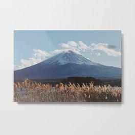Autumn at Mt Fuji Metal Print