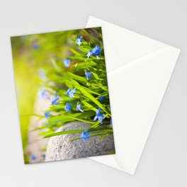 Scilla siberica flowerets named wood squill Stationery Cards
