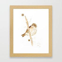 Sparow Framed Art Print