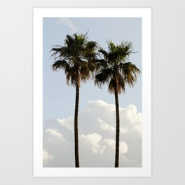 Palms In The Clouds  Art Print