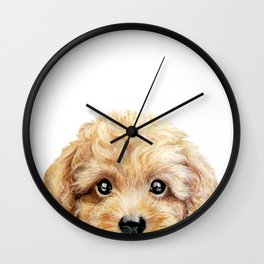 Toy poodle Dog illustration original painting print Wall Clock