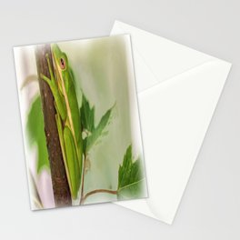 Painted Green Tree Frog Stationery Cards