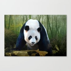 The Giant Panda Canvas Print