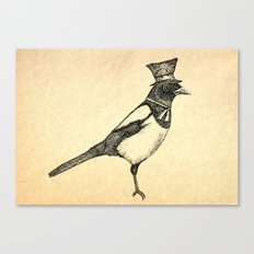 Hello Mister Magpie Canvas Print