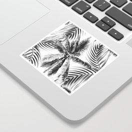 South Pacific palms II - bw Sticker