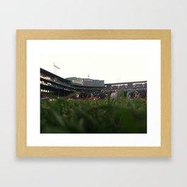 Fenway Grass Framed Art Print