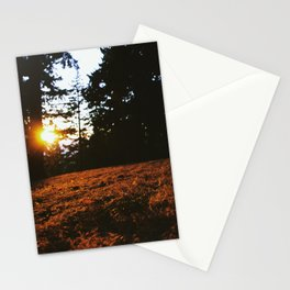 Fall's Last Light Stationery Cards