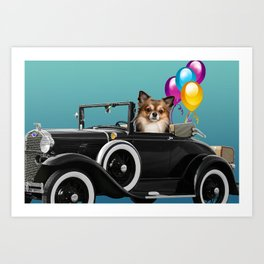 chihuahua Dog in Cabrio with balloons Art Print
