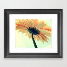 Flower in the spring Framed Art Print
