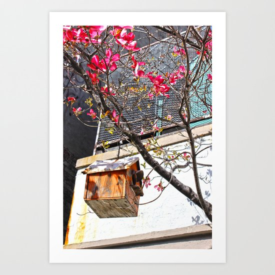 bird house 2 Art Print