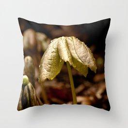 Natures Little Umbrella  Throw Pillow