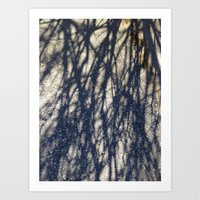 Abstracts in Nature Series -- Winter Tree Shadows Art Print