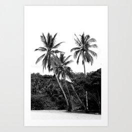 Palm Tree Noir #17 Art Print