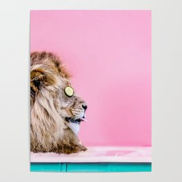 Lion in the Bathtub Poster