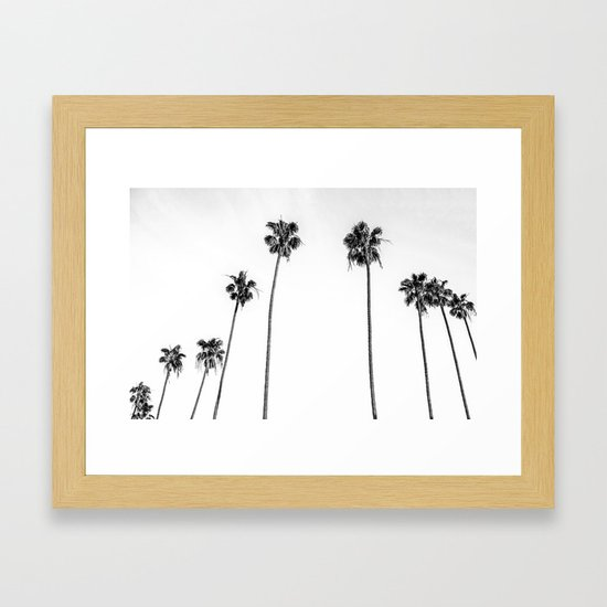 Black + White Palms by madeinthedesertco