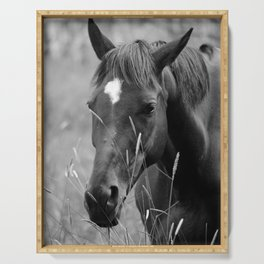 Horse Portrait - BW Serving Tray