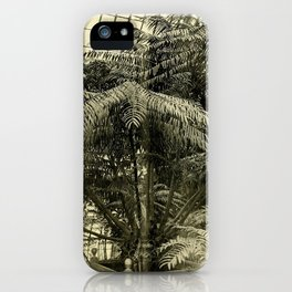 Angiopteris Tevsmanniana iPhone Case