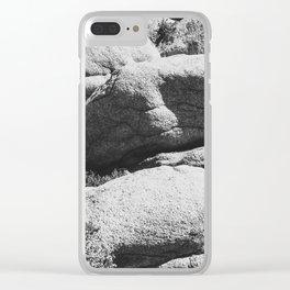 Big Rock 7444 Joshua Tree Clear iPhone Case