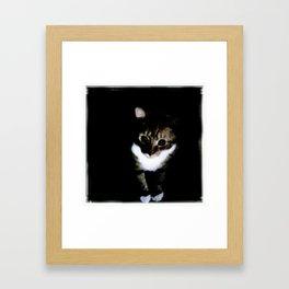tiny white paws Framed Art Print
