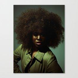 The Hair. It's Definitely The Hair... Canvas Print