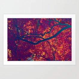 Arboreal Vessels - Carotide Art Print