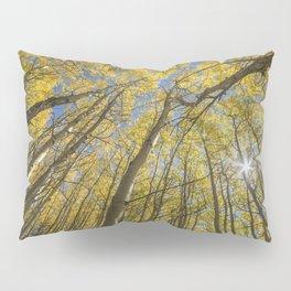 Sparkling Autumn 2 Pillow Sham