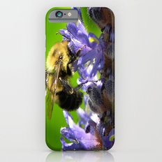 Bee all you can Bee iPhone 6s Slim Case