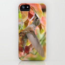 Little Ms. Hummingbird in for More Licks iPhone Case